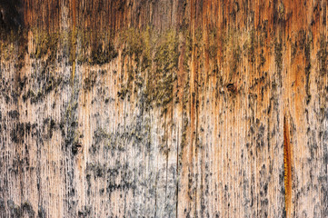 brown aged wooden board background