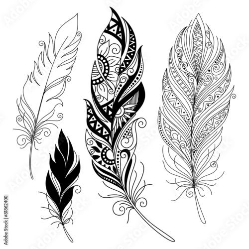 Vector Peerless Decorative Feather - 81862400