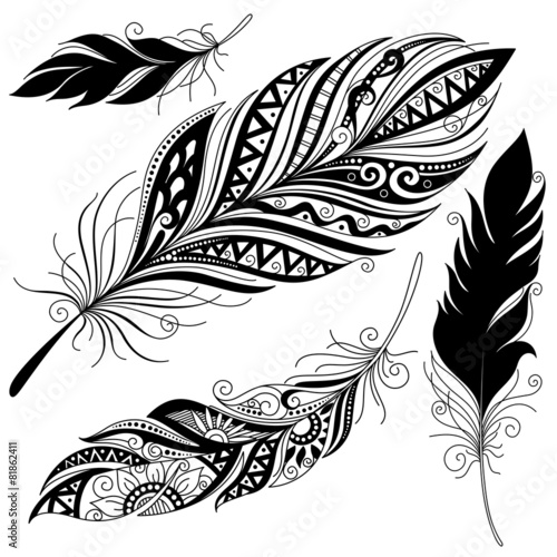 Vector Peerless Decorative Feather - 81862411