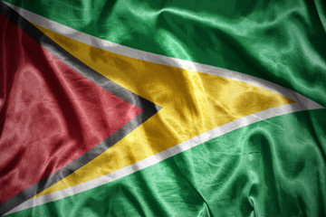 shining guyanese flag