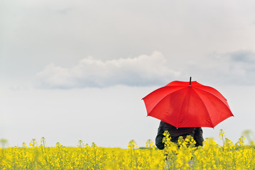 Person with Red Umbrella Standing in Oilseed Rapeseed Field