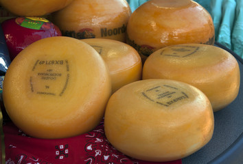 Seven dutch cheeses on the market