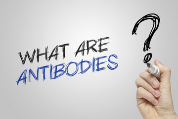 Hand writing what are antibodies