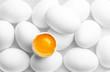 eggs - 81876207