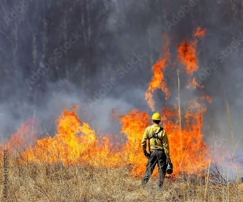 Prescribed Prairie Burn