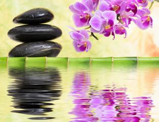 Japanischer ZEN Garten mit Wasserspiegelung