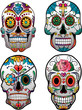 Set of 4 Vector Sugar Skulls - 81878855