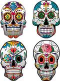 Set of 4 Vector Sugar Skulls - 81878855