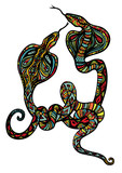 Two Ornate Snakes