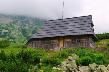 Wooden hut in mountains. Five Lakes Valley in Polish Tatra.