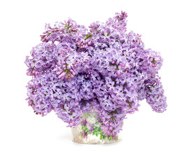 lilac over white