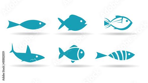 Fish Icons - 81882859