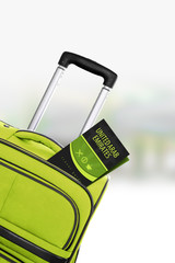 United Arab Emirates. Green suitcase with guidebook.