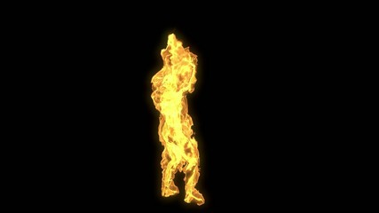 Burning Dancing Girl 01. High quality loop with alpha matte.