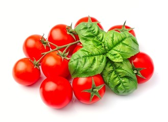 Tomatoes and basil herbs