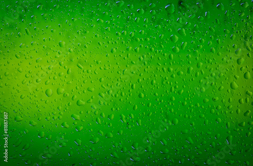Texture water drops on the bottle of beer. Beer background - 81887687