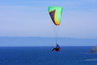 paraglider at Perranporth - 81888009