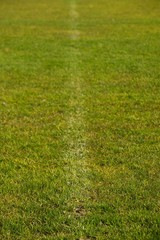 Worn painted white lines on cut football grass.