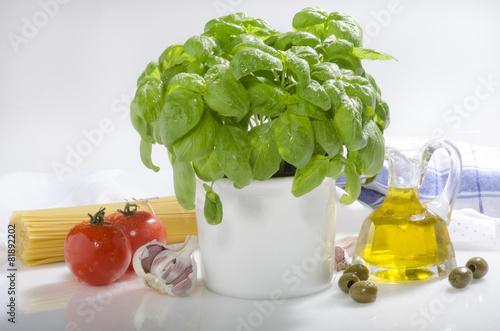 Basilikum Tomaten Spaghetti - 81892202