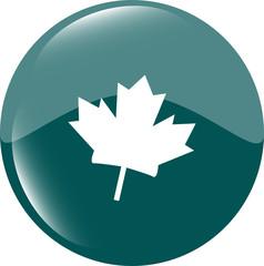 maple leaf icon glassy web button