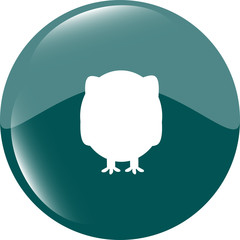 Owl on icon button isolated