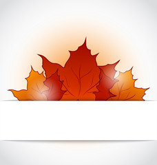 Autumnal maple leaves sticking out of the cut paper