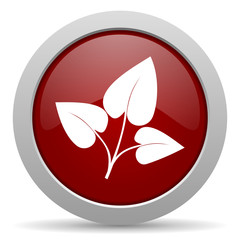 leaf red glossy web icon