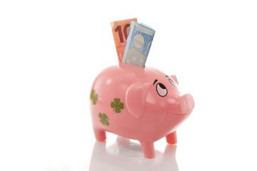 Rosa Sparschwein, Euros