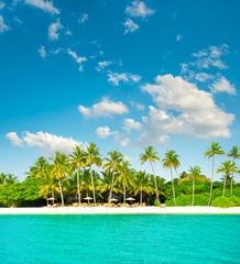 Sand beach with cloudy blue sky. Tropical island with palm trees