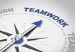 Teamwork - 81902058
