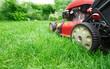 Lawn mower. - 81902072