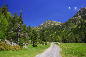 Touristic trail in Pyrenees mountains, Catalonia