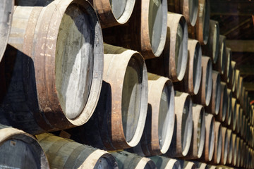 Numerous oak barrels stacked in the old cellar with aging Port w