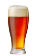 glass of beer - 81905072