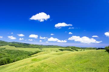 北の大地の草原風景