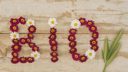 Wort BIO aus Blüten mit Getreideähren auf Holz