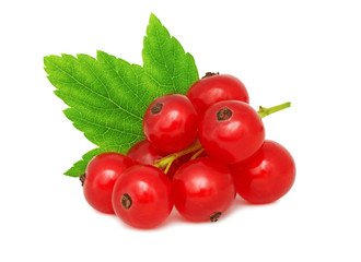 One bunch of ripe redcurrant with green leaf (isolated)