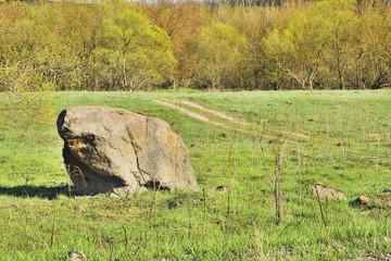 Камень на траве