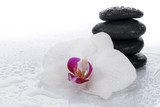 White orchid and spa stones