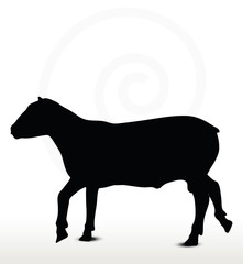 sheep silhouette with trot pose