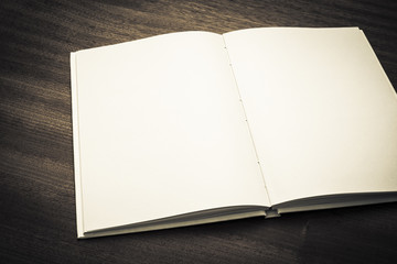 Open book with blank white pages