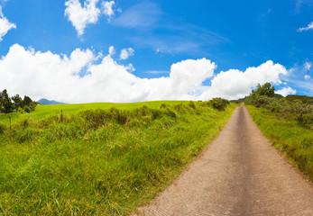 Chemin de campagne, Plaine des Cafres, la Réunion