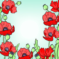floral frame with poppy flowers