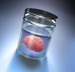 Brain in a large jar
