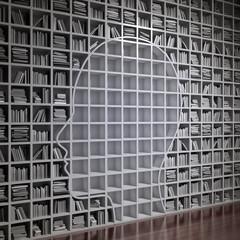 Head silhouette bookshelf