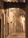 Pistoia (Tuscany, Italy) - 81929237