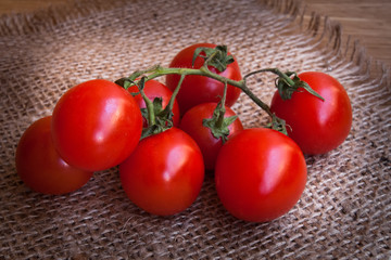 cherry tomatoes with paprika