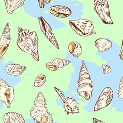 vector seamless pattern of shells on blue background