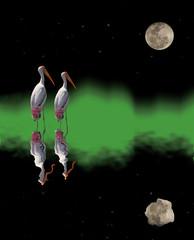 fantasy world storks and moon