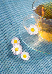 Cup of tea with chamomile flower, outdoor - outside